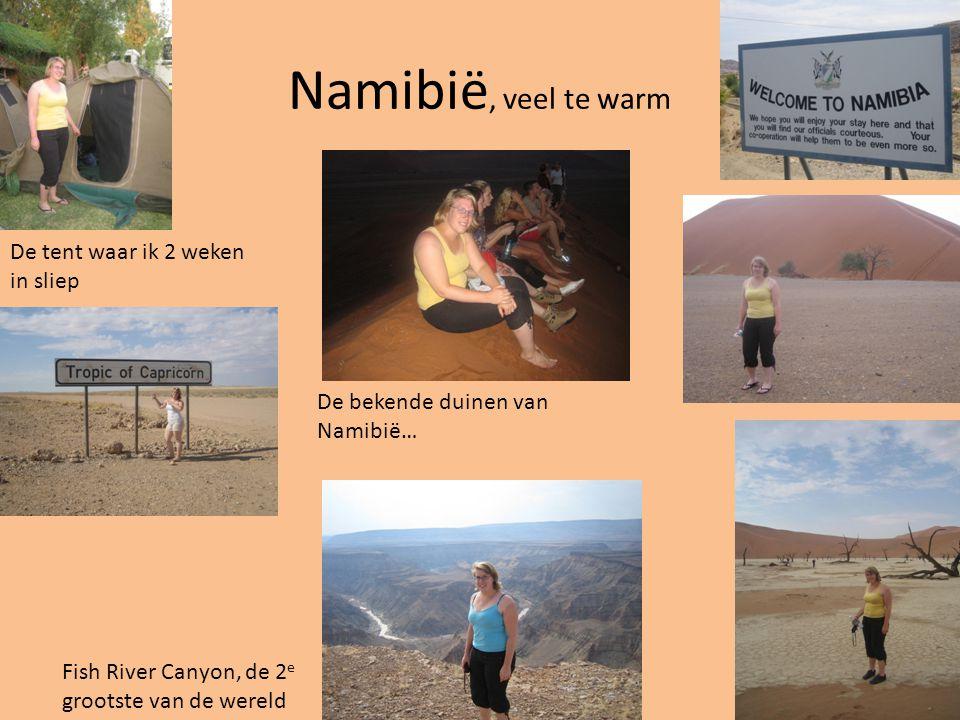 Namibië, veel te warm De bekende duinen van Namibië… Fish River Canyon, de 2 e grootste van de wereld De tent waar ik 2 weken in sliep
