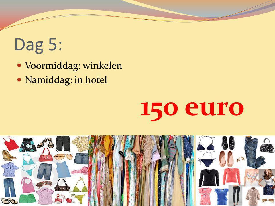 Dag 5: Voormiddag: winkelen Namiddag: in hotel 150 euro