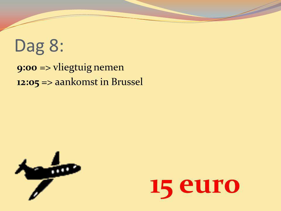 Dag 8: 9:00 => vliegtuig nemen 12:05 => aankomst in Brussel 15 euro