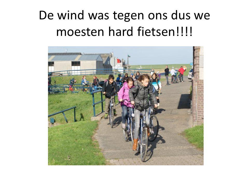 De wind was tegen ons dus we moesten hard fietsen!!!!