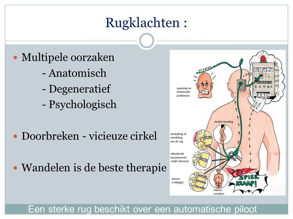 Rugklachten : Multipele oorzaken - Anatomisch - Degeneratief - Psychologisch Doorbreken - vicieuze cirkel Wandelen is de beste therapie Een sterke rug beschikt over een automatische piloot