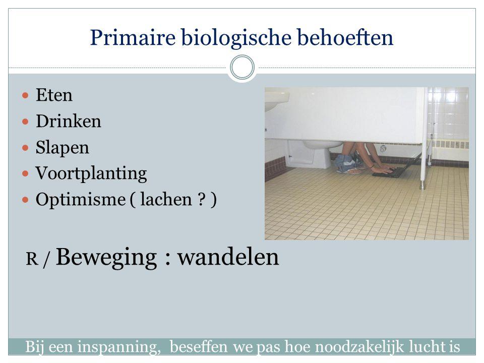 Primaire biologische behoeften Eten Drinken Slapen Voortplanting Optimisme ( lachen .