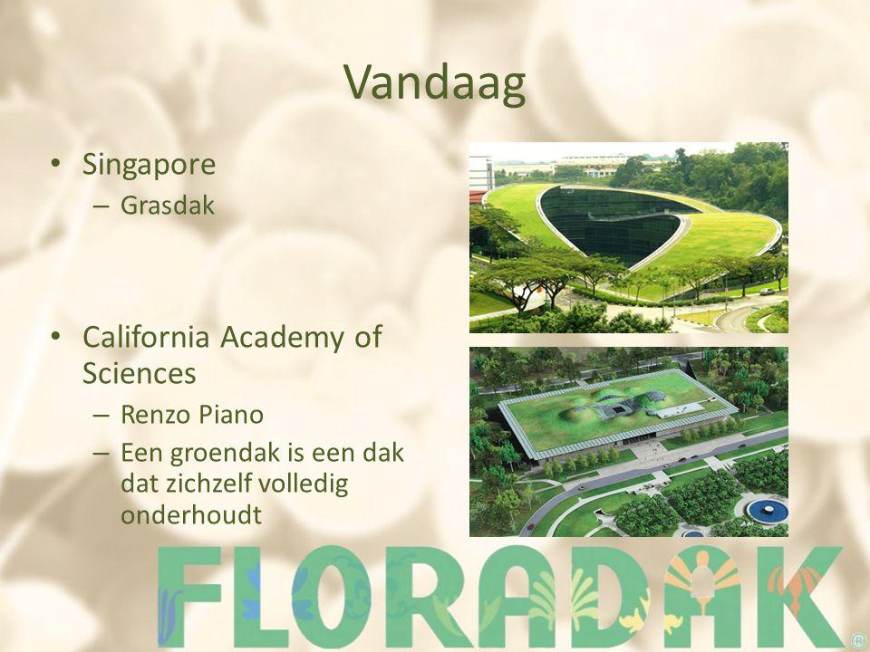 Vandaag Singapore – Grasdak California Academy of Sciences – Renzo Piano – Een groendak is een dak dat zichzelf volledig onderhoudt