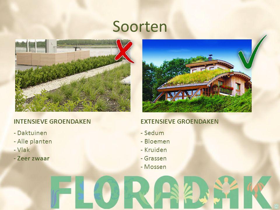 Soorten INTENSIEVE GROENDAKENEXTENSIEVE GROENDAKEN - Daktuinen - Alle planten - Vlak - Zeer zwaar - Sedum - Bloemen - Kruiden - Grassen - Mossen