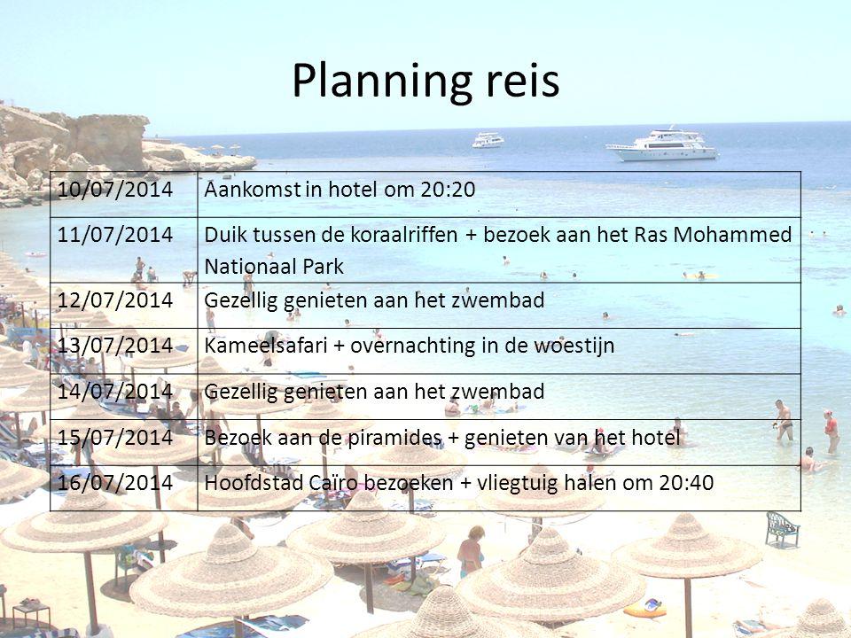 Planning reis 10/07/2014Aankomst in hotel om 20:20 11/07/2014 Duik tussen de koraalriffen + bezoek aan het Ras Mohammed Nationaal Park 12/07/2014Gezellig genieten aan het zwembad 13/07/2014Kameelsafari + overnachting in de woestijn 14/07/2014Gezellig genieten aan het zwembad 15/07/2014Bezoek aan de piramides + genieten van het hotel 16/07/2014Hoofdstad Caïro bezoeken + vliegtuig halen om 20:40