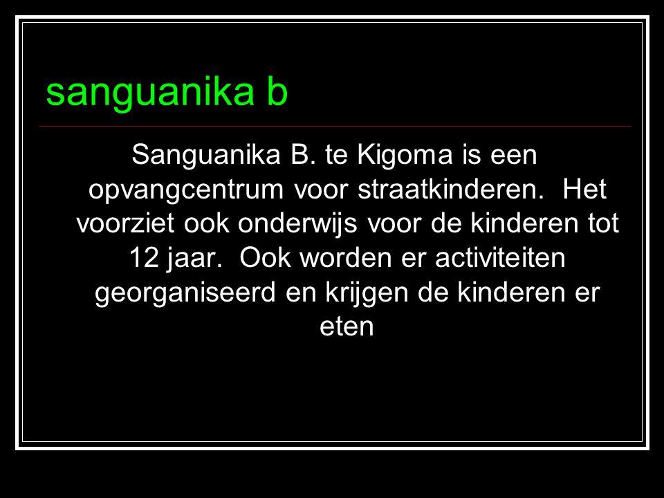 sanguanika b Sanguanika B. te Kigoma is een opvangcentrum voor straatkinderen. Het voorziet ook onderwijs voor de kinderen tot 12 jaar. Ook worden er