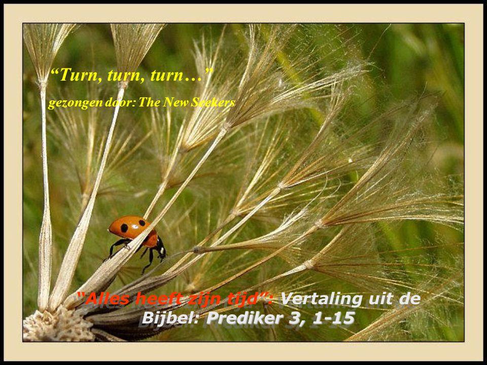 Prediker 3, 1-15 Alles heeft zijn tijd : Vertaling uit de Bijbel: Prediker 3, 1-15 Turn, turn, turn… gezongen door: The New Seekers