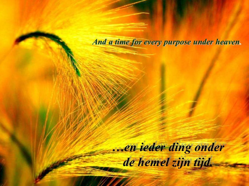 To everything, turn, turn, turn. There is a season, turn, turn, turn. Alles heeft zijn uur…
