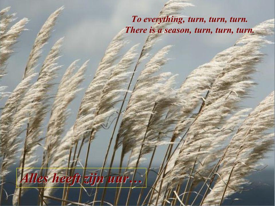 """Prediker 3, 1-15 """"Alles heeft zijn tijd"""": Vertaling uit de Bijbel: Prediker 3, 1-15 """"Turn, turn, turn…"""" gezongen door: The New Seekers"""