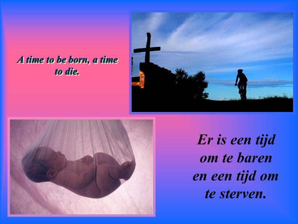 And a time for every purpose under heaven. …en ieder ding onder de hemel zijn tijd.