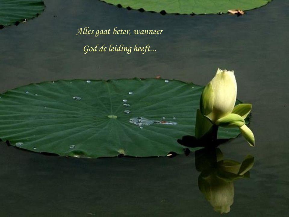 Dat zou je ook wel God kunnen noemen... Hij is altijd aan jouw zijde en liefdevol geleidt Hij iedere stap van jouw levenspad...