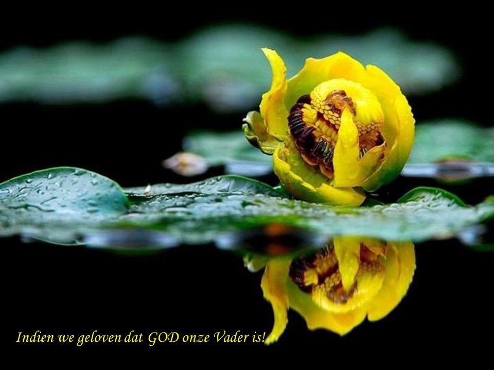 We kunnen misschien met iedereen delen dat… GOD EEN GEWELDIG GROTE LIEFDE VOOR ONS KOESTERT...