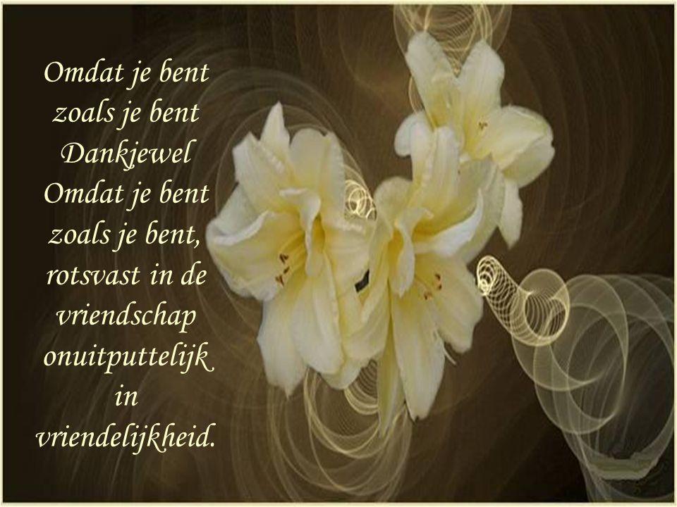 Omdat je bent zoals je bent Dankjewel Omdat je bent zoals je bent, rotsvast in de vriendschap onuitputtelijk in vriendelijkheid.