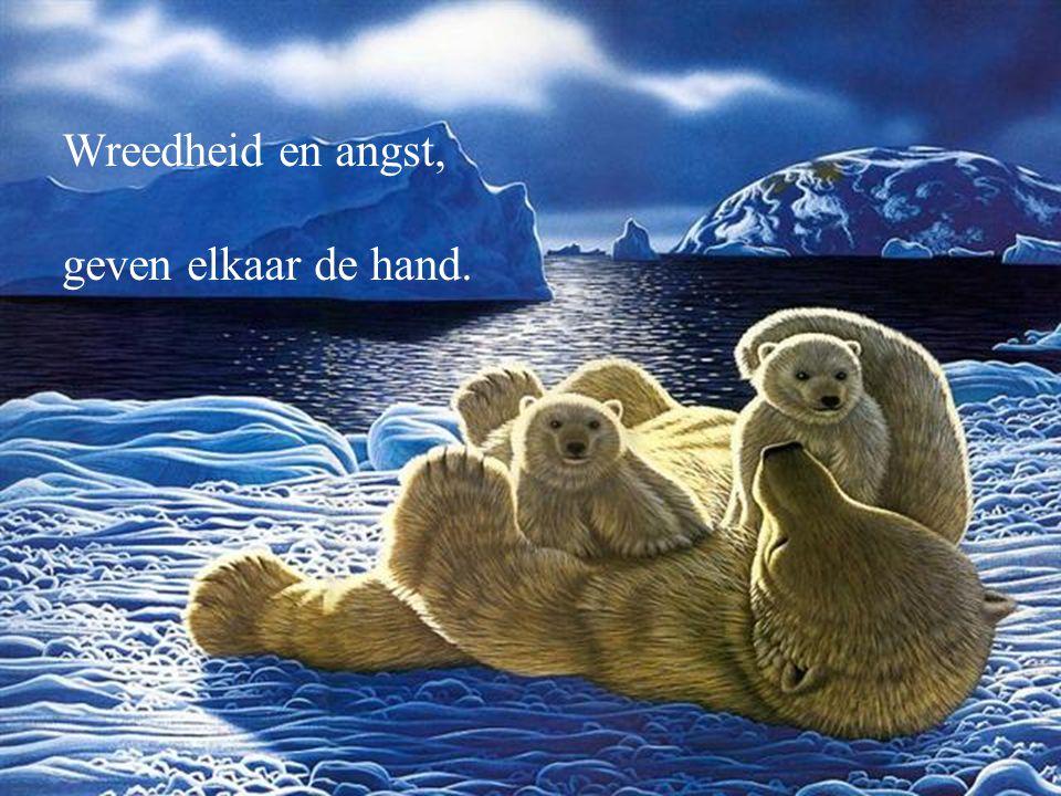 Moeder Eskimo moet thuis bevallen, haar ijs is gebroken.