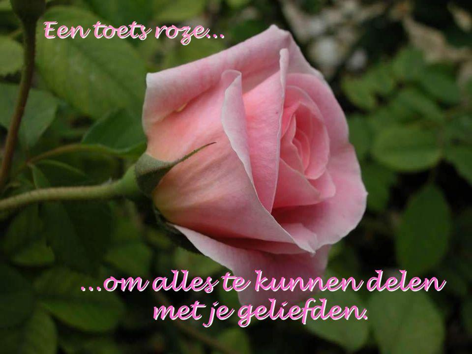 Een toets roze...