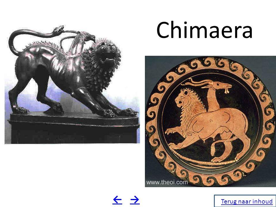 Chimaera Terug naar inhoud →←