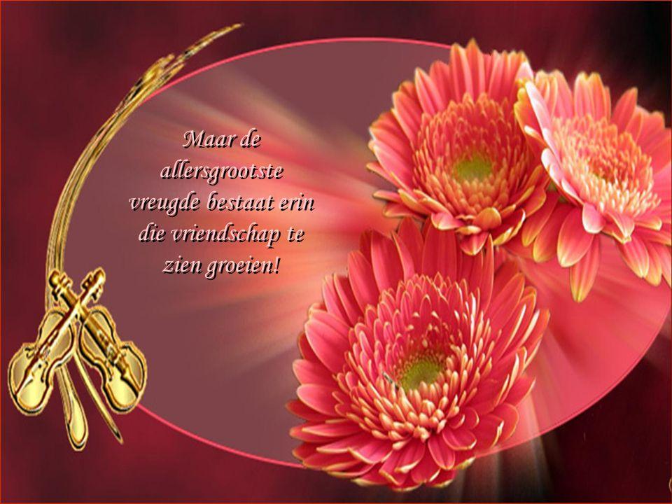 Maar de allersgrootste vreugde bestaat erin die vriendschap te zien groeien.