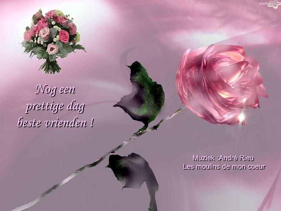 Maar de allersgrootste vreugde bestaat erin die vriendschap te zien groeien! Maar de allersgrootste vreugde bestaat erin die vriendschap te zien groei
