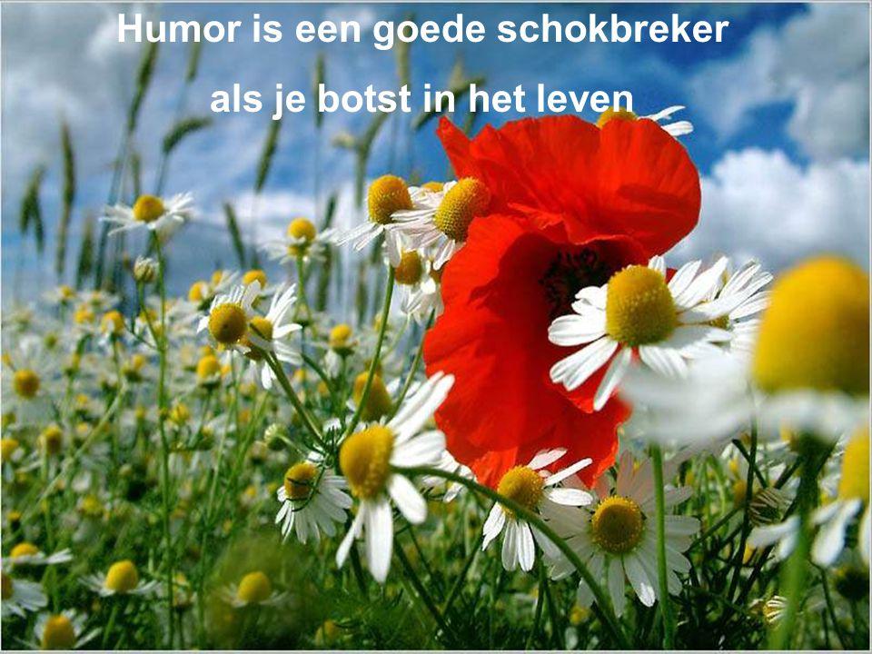 Humor is een goede schokbreker als je botst in het leven