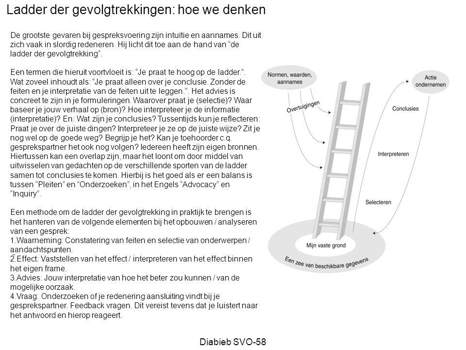 Diabieb SVO-58 Projectorganisatie Valkuil: bevestiging huidige structuur SG PR WG -Strategie -Samenwerking -Structuur Peter JanJohan P&O ICT Account Management