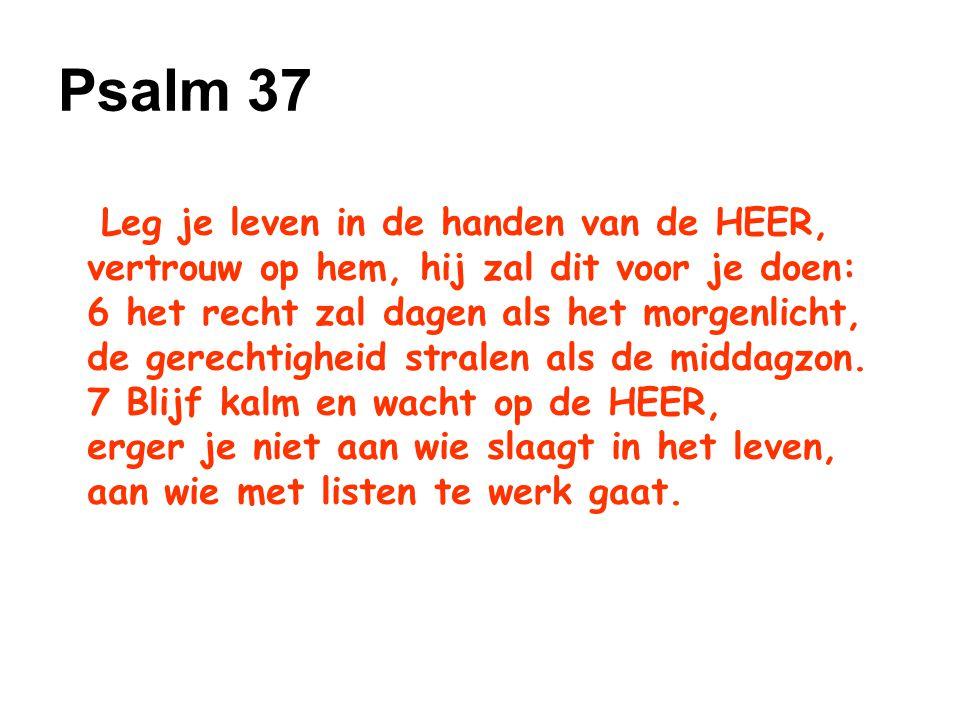 Leg je leven in de handen van de HEER, vertrouw op hem, hij zal dit voor je doen: 6 het recht zal dagen als het morgenlicht, de gerechtigheid stralen