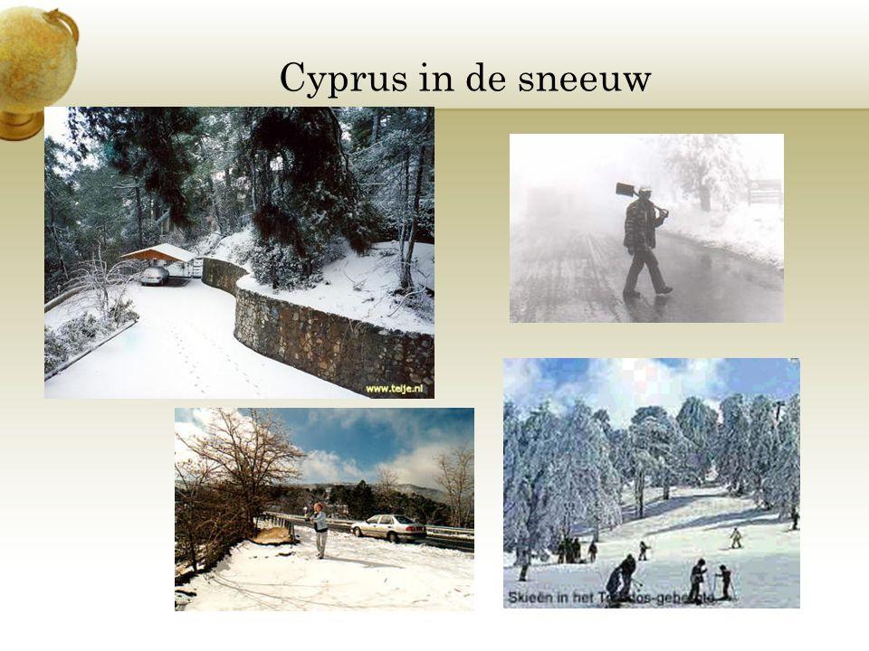Cyprus in de sneeuw
