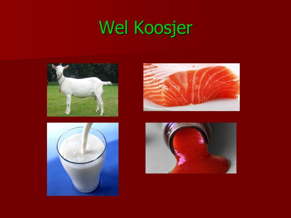 Wel Koosjer
