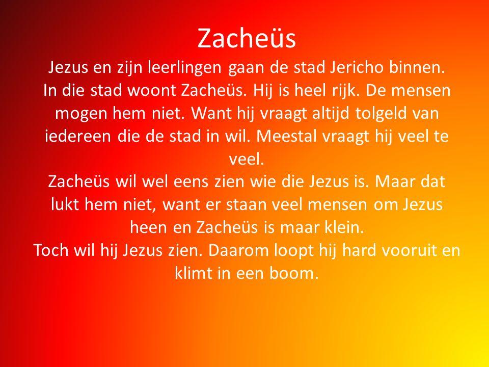 Zacheüs Jezus en zijn leerlingen gaan de stad Jericho binnen. In die stad woont Zacheüs. Hij is heel rijk. De mensen mogen hem niet. Want hij vraagt a