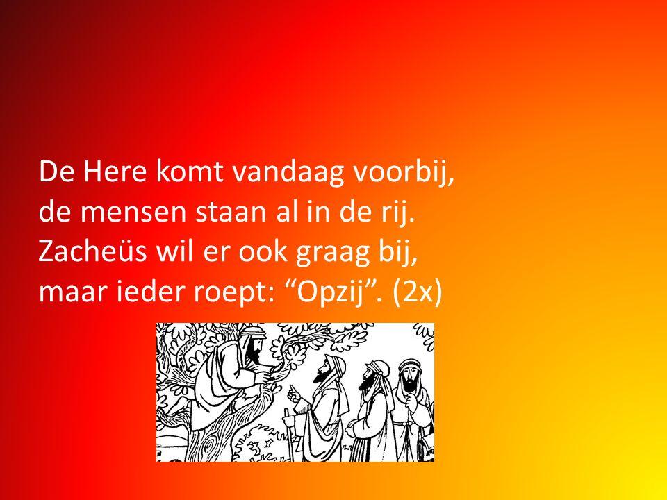 """De Here komt vandaag voorbij, de mensen staan al in de rij. Zacheüs wil er ook graag bij, maar ieder roept: """"Opzij"""". (2x)"""
