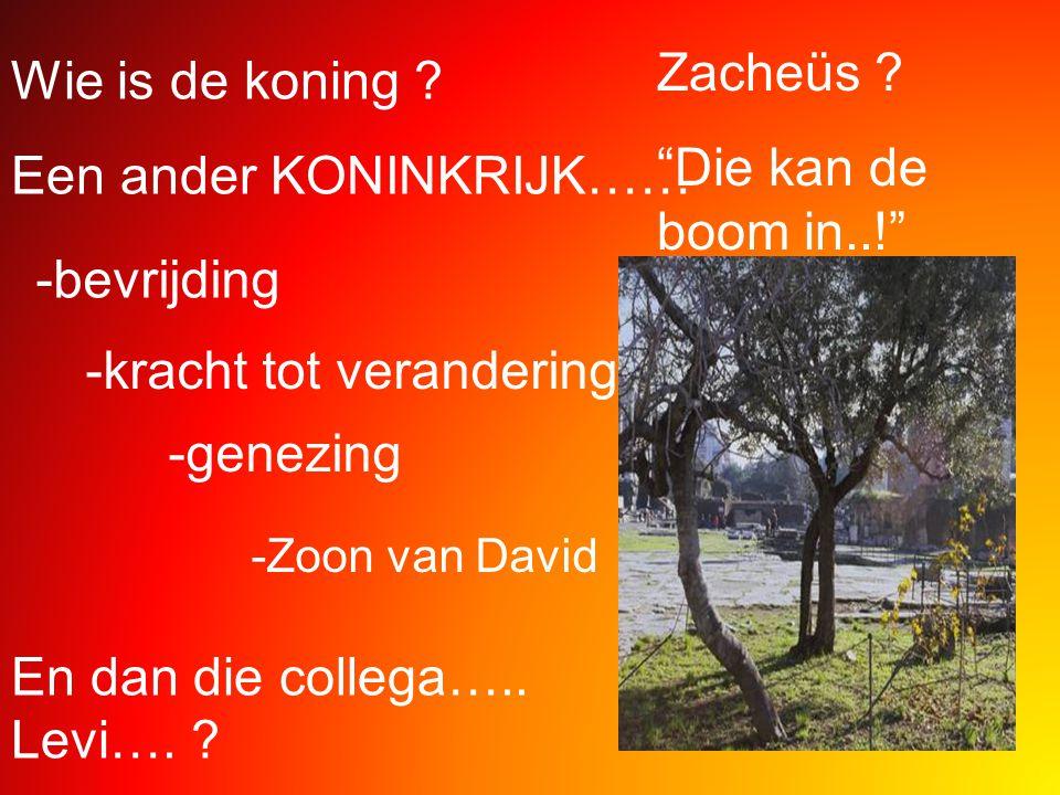"""Wie is de koning ? Een ander KONINKRIJK…… -bevrijding -kracht tot verandering -genezing -Zoon van David En dan die collega….. Levi…. ? Zacheüs ? """"Die"""