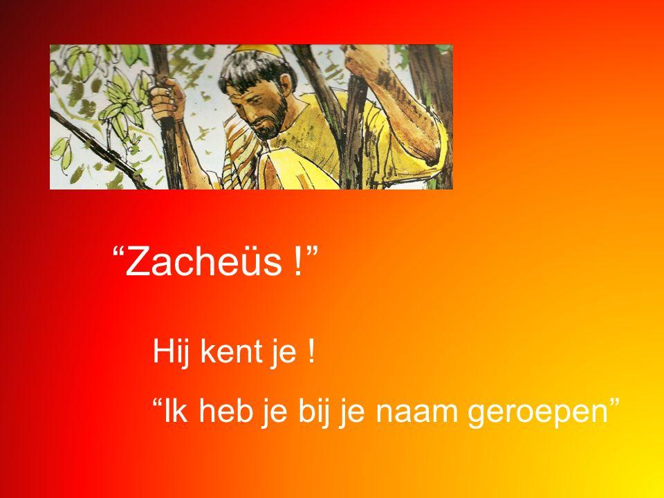 """""""Zacheüs !"""" Hij kent je ! """"Ik heb je bij je naam geroepen"""""""