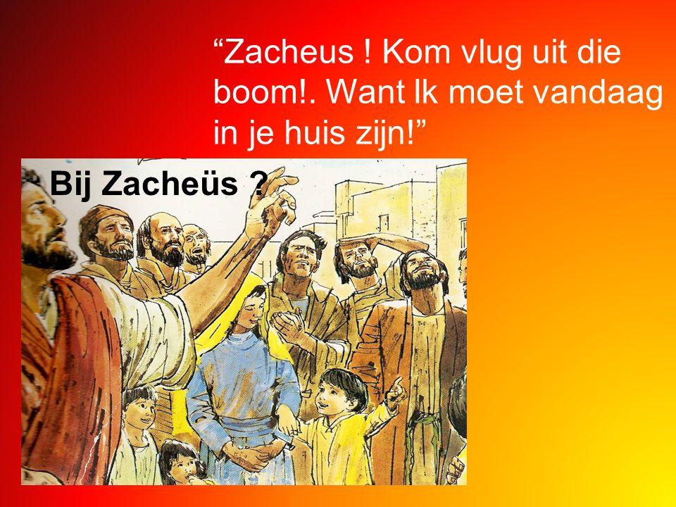 """""""Zacheus ! Kom vlug uit die boom!. Want Ik moet vandaag in je huis zijn!"""" Bij Zacheüs ?"""
