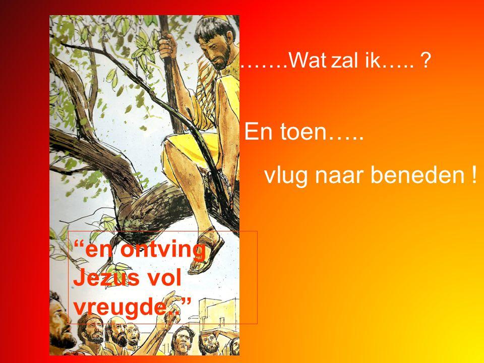 """…….Wat zal ik….. ? En toen….. vlug naar beneden ! """"en ontving Jezus vol vreugde.."""""""