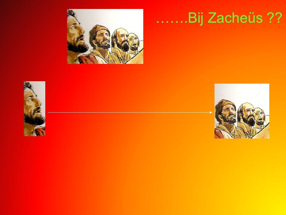 …….Bij Zacheüs ??
