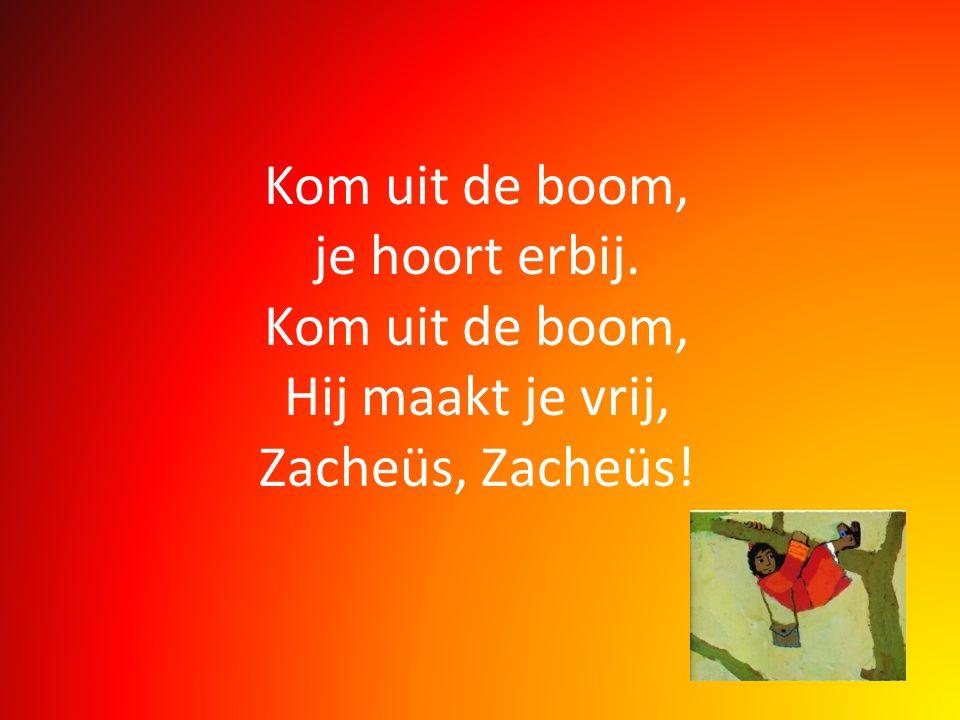 Kom uit de boom, je hoort erbij. Kom uit de boom, Hij maakt je vrij, Zacheüs, Zacheüs!