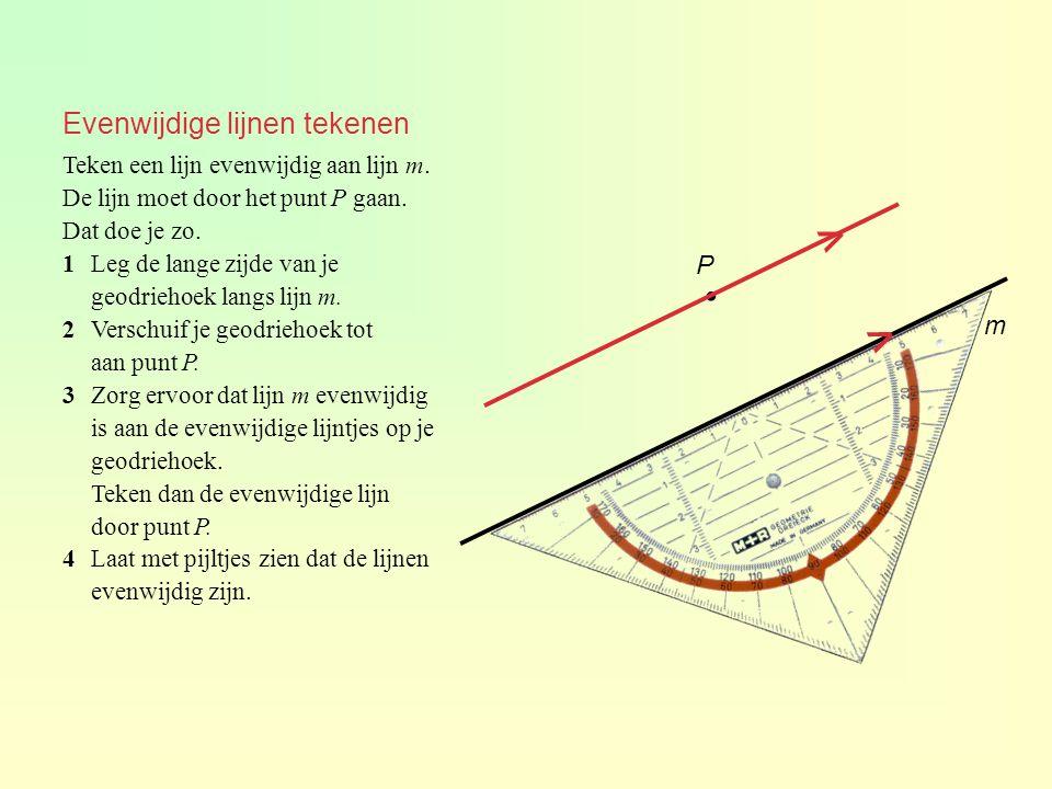 Evenwijdige lijnen tekenen Teken een lijn evenwijdig aan lijn m. De lijn moet door het punt P gaan. Dat doe je zo. 1Leg de lange zijde van je geodrieh