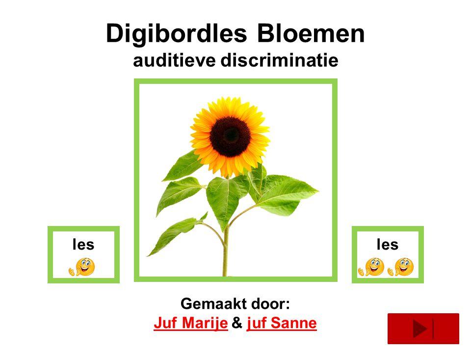 Digibordles Bloemen auditieve discriminatie Gemaakt door: Juf MarijeJuf Marije & juf Sannejuf Sanne les