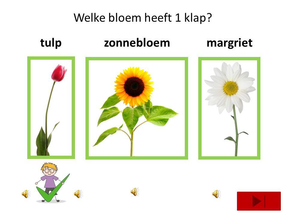 Welke bloem heeft 2 klappen? roosnarcistulp