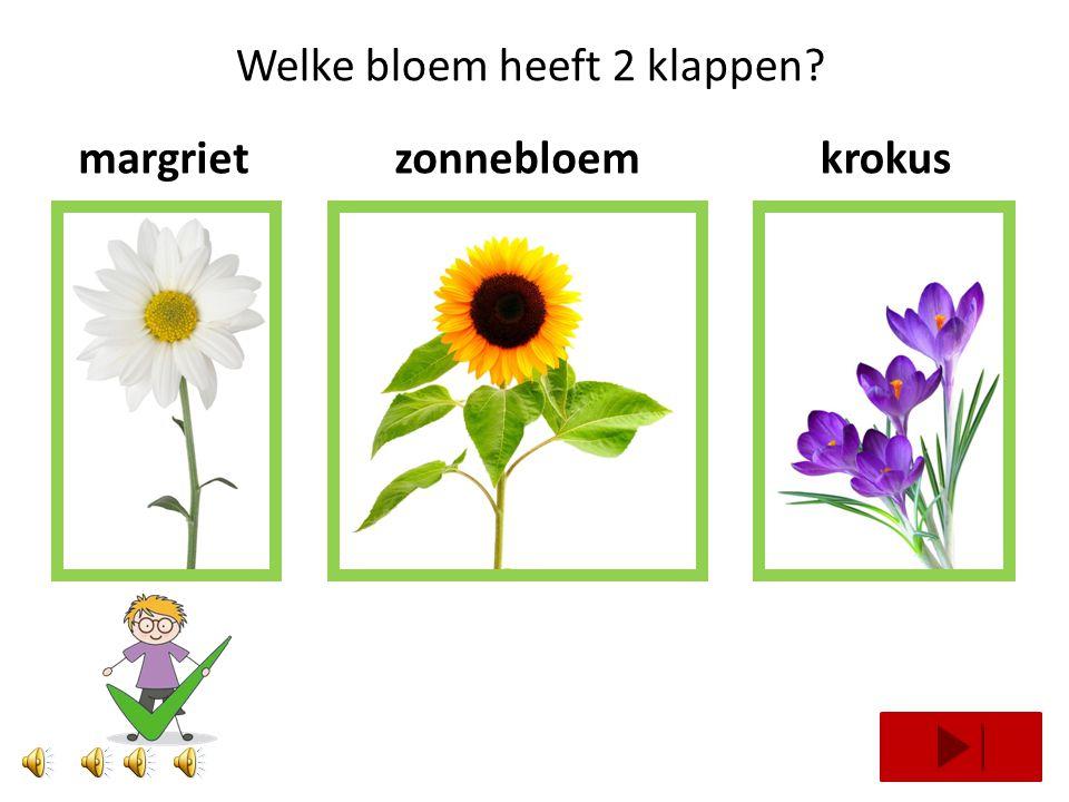 Welke bloem heeft 3 klappen? tulphyacintviool