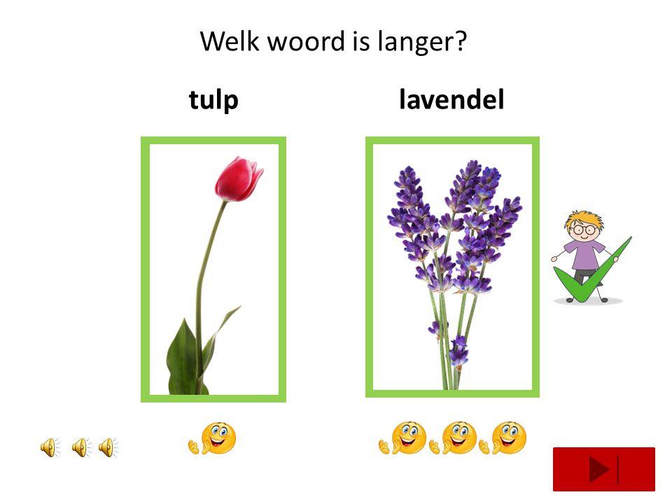 Welke bloem heeft 2 klappen? sleutelbloemblauwe druifklaproos