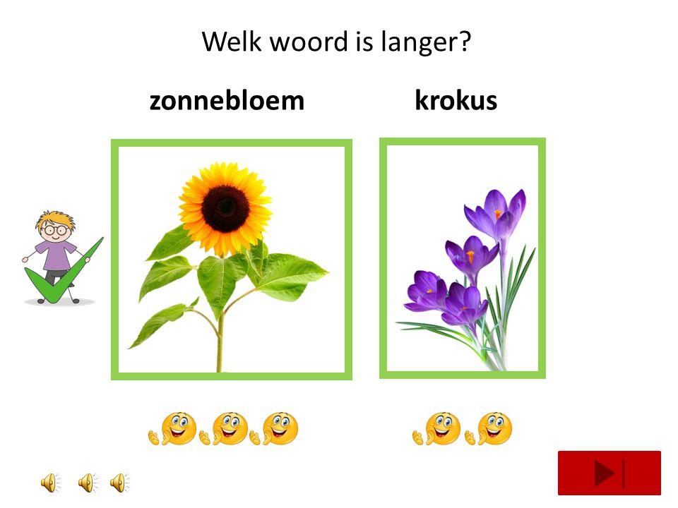 Welk woord is langer? klaproosboterbloem