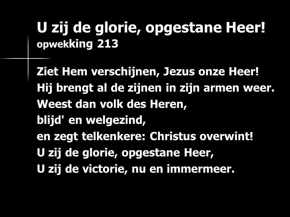 U zij de glorie, opgestane Heer! opwek king 213 Ziet Hem verschijnen, Jezus onze Heer! Hij brengt al de zijnen in zijn armen weer. Weest dan volk des
