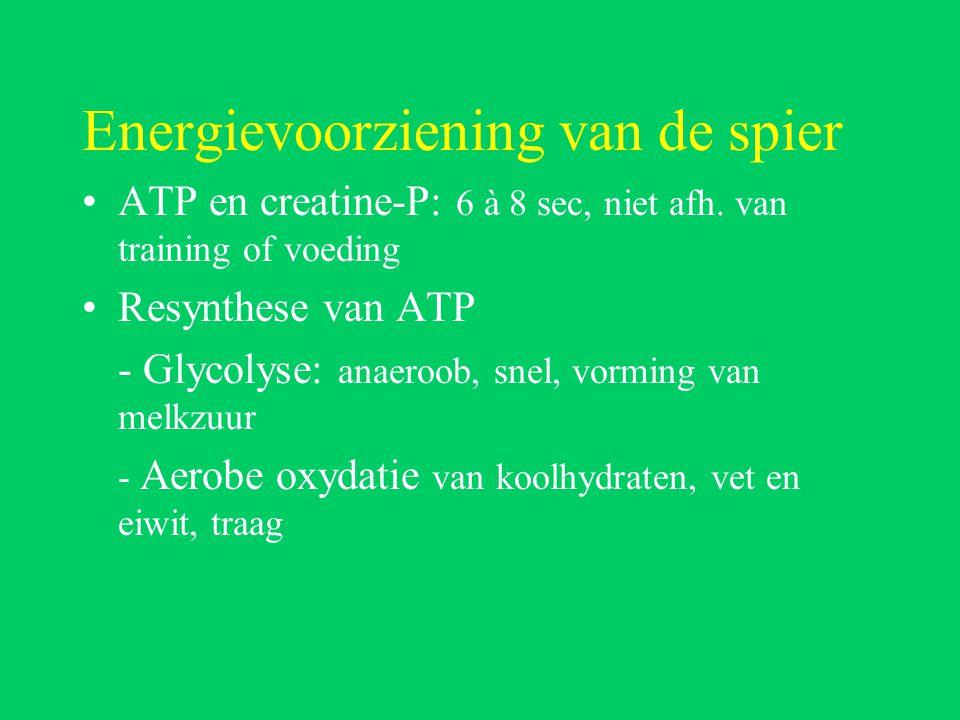 Energievoorziening van de spier ATP en creatine-P: 6 à 8 sec, niet afh.