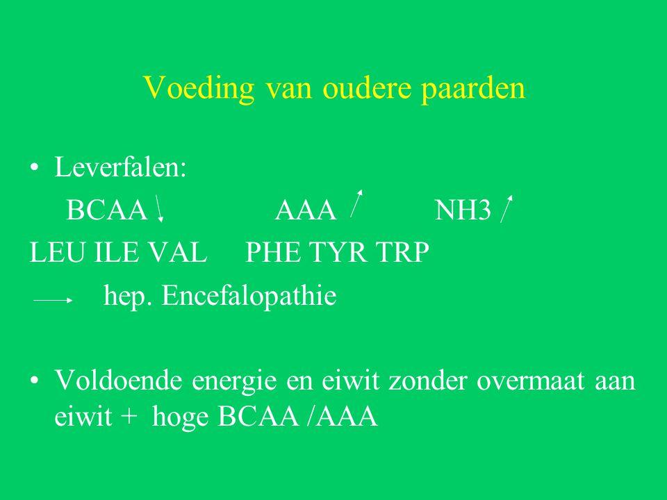 Voeding van oudere paarden Leverfalen: BCAA AAA NH3 LEU ILE VAL PHE TYR TRP hep.