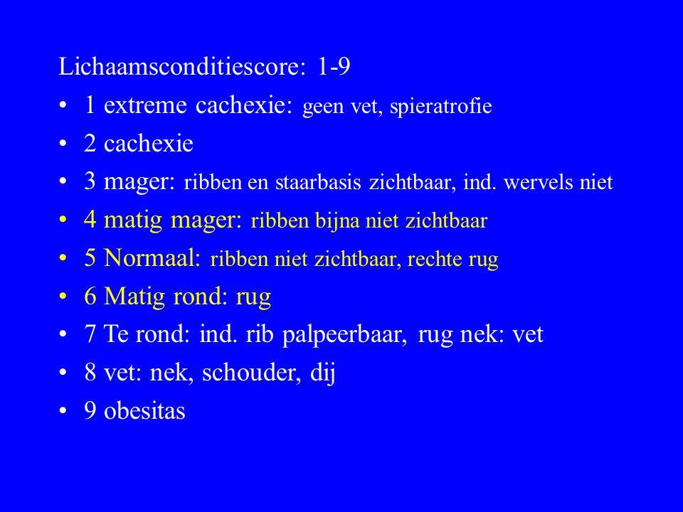 Lichaamsconditiescore: 1-9 1 extreme cachexie: geen vet, spieratrofie 2 cachexie 3 mager: ribben en staarbasis zichtbaar, ind.