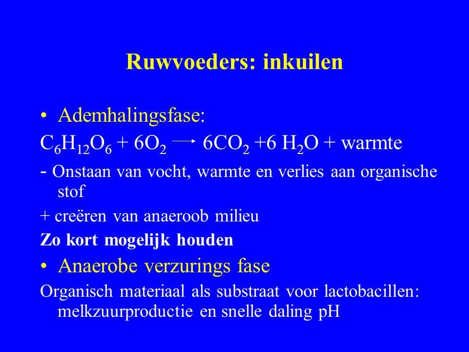 Ruwvoeders: inkuilen Ademhalingsfase: C 6 H 12 O 6 + 6O 2 6CO 2 +6 H 2 O + warmte - Onstaan van vocht, warmte en verlies aan organische stof + creëren van anaeroob milieu Zo kort mogelijk houden Anaerobe verzurings fase Organisch materiaal als substraat voor lactobacillen: melkzuurproductie en snelle daling pH