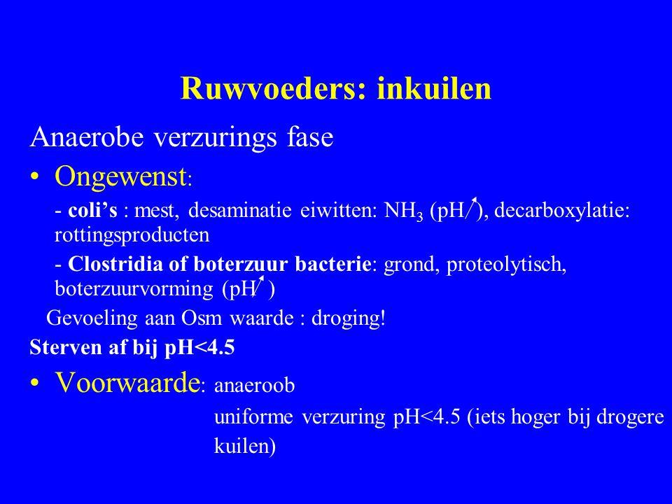 Ruwvoeders: inkuilen Anaerobe verzurings fase Ongewenst : - coli's : mest, desaminatie eiwitten: NH 3 (pH ), decarboxylatie: rottingsproducten - Clostridia of boterzuur bacterie: grond, proteolytisch, boterzuurvorming (pH ) Gevoeling aan Osm waarde : droging.