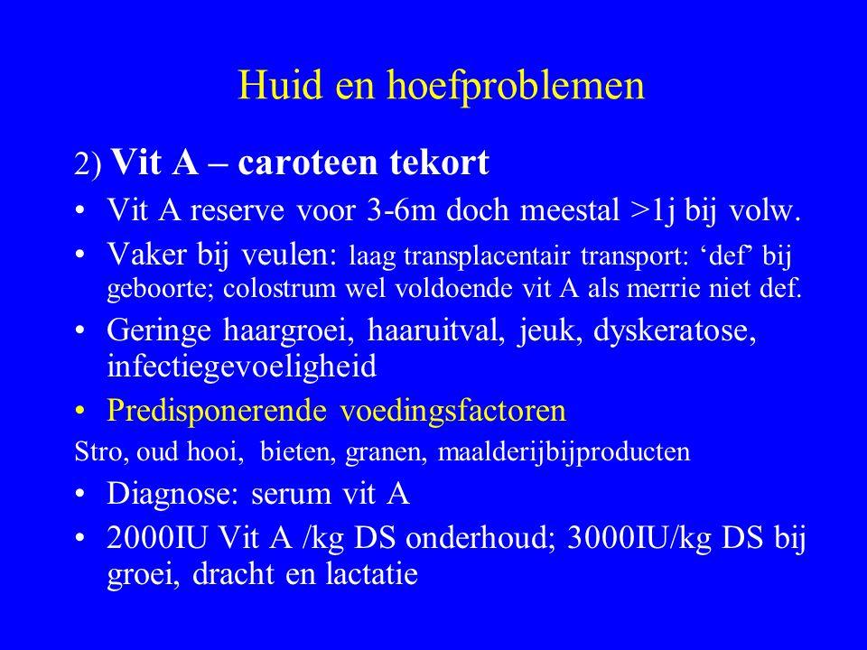 Huid en hoefproblemen 2) Vit A – caroteen tekort Vit A reserve voor 3-6m doch meestal >1j bij volw.