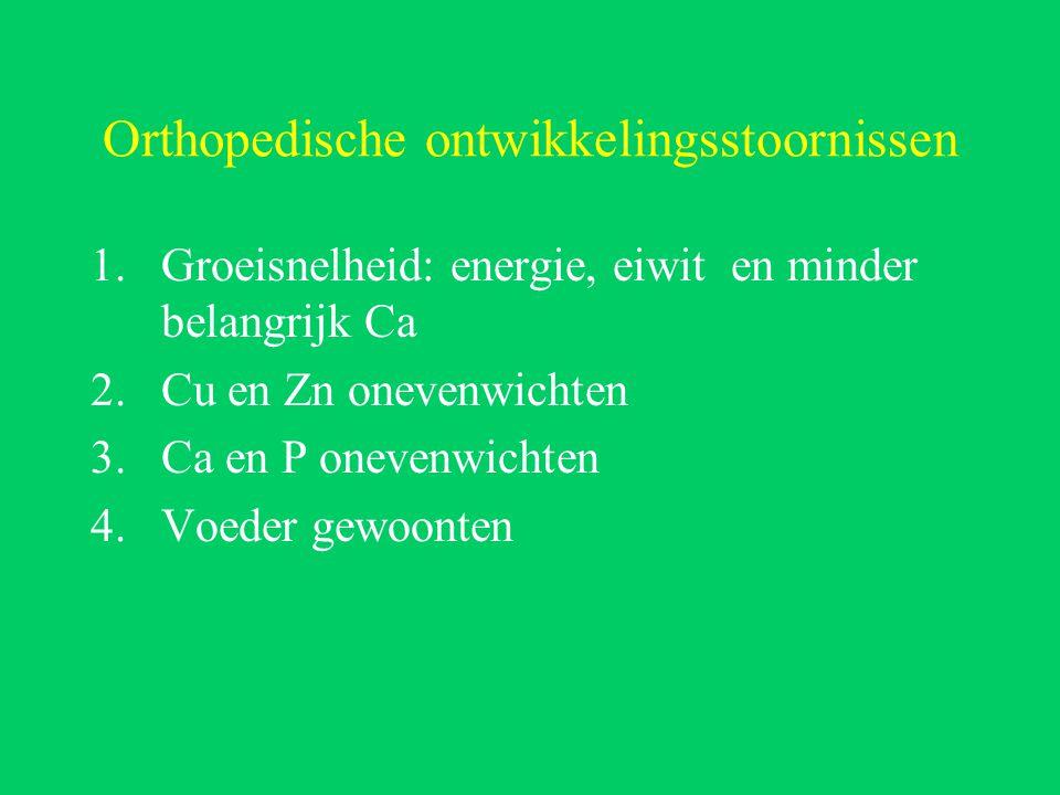 Orthopedische ontwikkelingsstoornissen 1.Groeisnelheid: energie, eiwit en minder belangrijk Ca 2.Cu en Zn onevenwichten 3.Ca en P onevenwichten 4.Voeder gewoonten