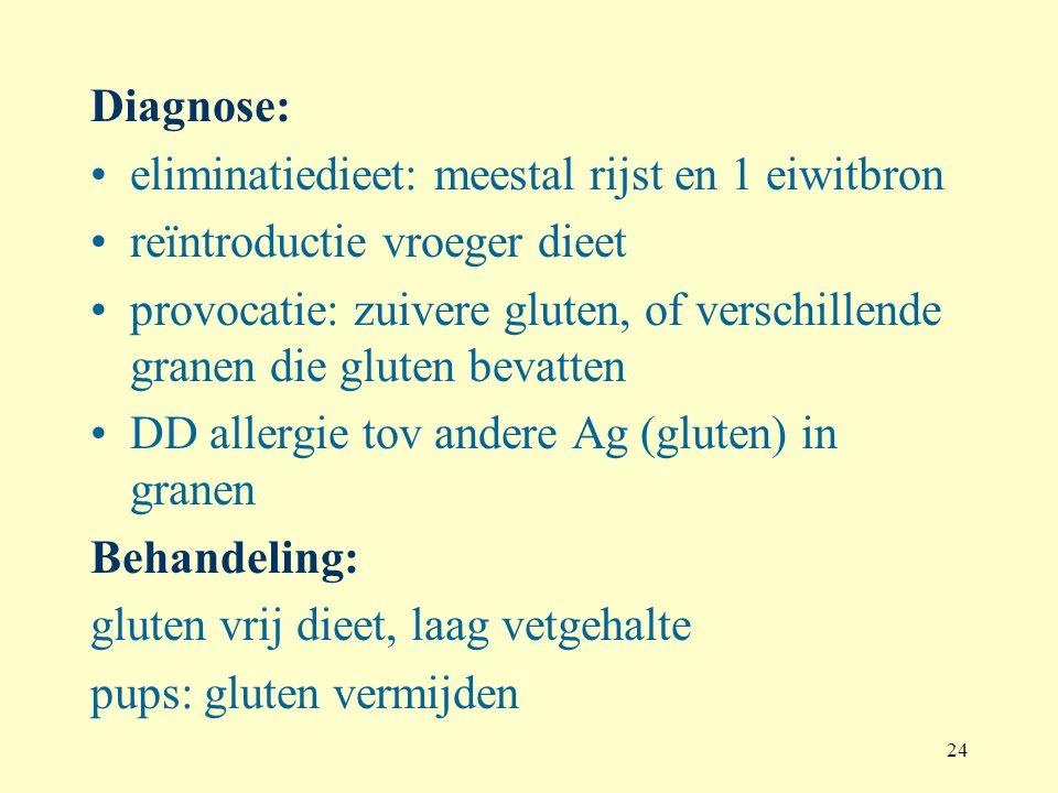 24 Diagnose: eliminatiedieet: meestal rijst en 1 eiwitbron reïntroductie vroeger dieet provocatie: zuivere gluten, of verschillende granen die gluten